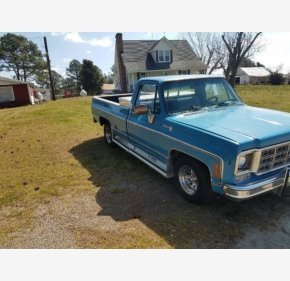 1976 Chevrolet C/K Truck for sale 101124422
