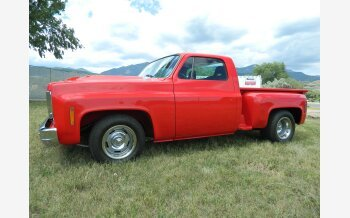 1976 Chevrolet C/K Truck Silverado for sale 101278745