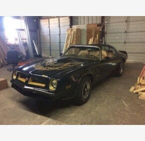 1976 Pontiac Firebird for sale 101042569