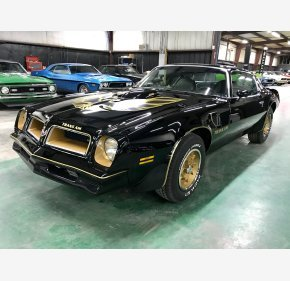 1976 Pontiac Trans Am for sale 101057565