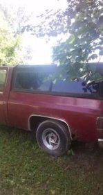 1977 Chevrolet C/K Truck for sale 100931865