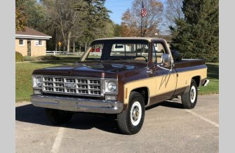 1977 Chevrolet C/K Truck for sale 101049972