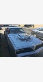 1977 Pontiac Firebird for sale 101080144