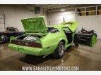 1977 Pontiac Firebird for sale 101526983