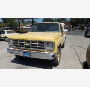 1978 Chevrolet C/K Truck Cheyenne for sale 101019525