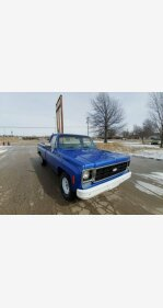 1978 Chevrolet C/K Truck for sale 101118416