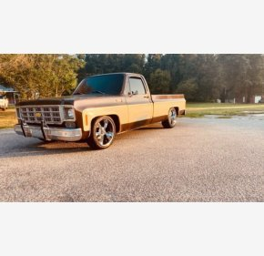 1978 Chevrolet C/K Truck for sale 101356167