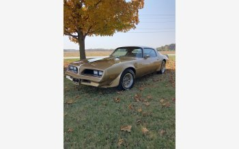 1978 Pontiac Trans Am for sale 101390165
