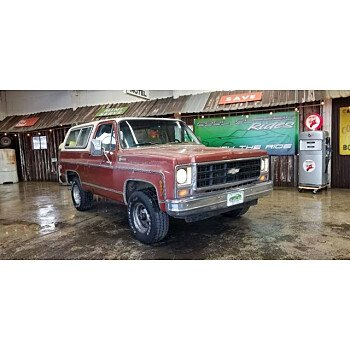 1979 Chevrolet Blazer for sale 101084789