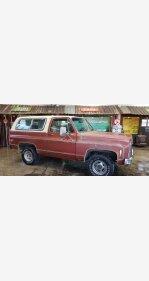 1979 Chevrolet Blazer for sale 101084789