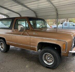 1979 Chevrolet Blazer for sale 101411800