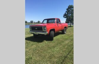 1979 Chevrolet C/K Truck 4x4 Regular Cab 1500 for sale 101126828