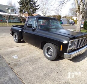 1979 Chevrolet C/K Truck Silverado for sale 101344821