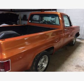 1979 Chevrolet C/K Truck for sale 100927134