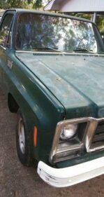 1979 Chevrolet C/K Truck for sale 101042527