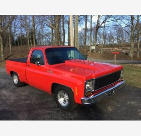 1979 Chevrolet C/K Truck for sale 101097175