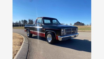 1979 Chevrolet C/K Truck for sale 101463333