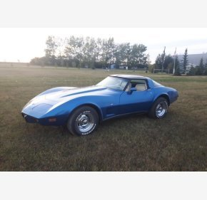 1979 Chevrolet Corvette for sale 101143106