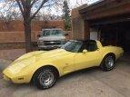 1979 Chevrolet Corvette for sale 101361188