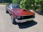 1979 Chevrolet Nova for sale 101538182