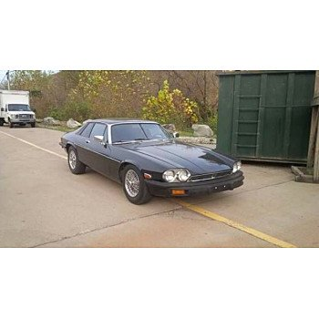 1979 Jaguar XJS for sale 100974849