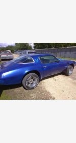 1979 Pontiac Firebird for sale 100927130
