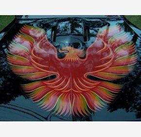 1979 Pontiac Firebird for sale 101324975
