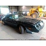 1979 Pontiac Firebird for sale 101600893