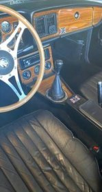 1979 Shelby Cobra for sale 101357357
