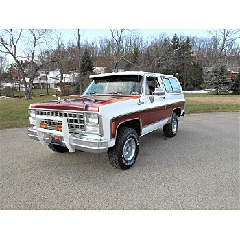 1980 Chevrolet Blazer for sale 101447449