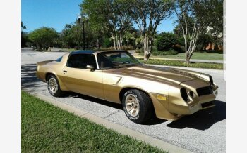 1980 Chevrolet Camaro Z28 Coupe for sale 100924801
