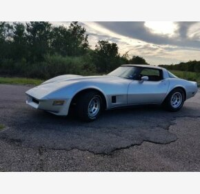 1980 Chevrolet Corvette for sale 101063039