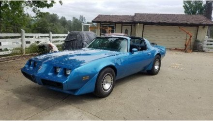 1980 Pontiac Firebird for sale 101019487