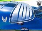 1980 Pontiac Firebird for sale 101564337