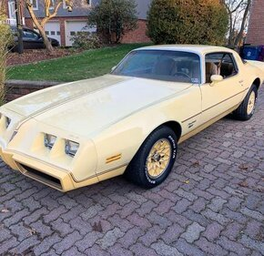 1980 Pontiac Firebird Esprit for sale 101305918