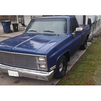 1981 Chevrolet C/K Truck 2WD Regular Cab 1500 for sale 100921897