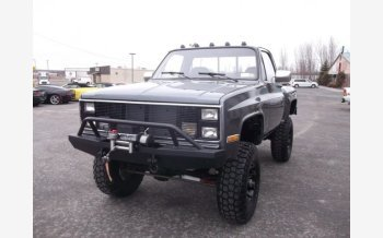 1981 Chevrolet C/K Truck 2WD Regular Cab 1500 for sale 101042408