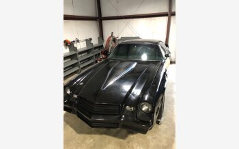 1981 Chevrolet Camaro Coupe for sale 101125110