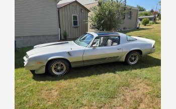 1981 Chevrolet Camaro Coupe for sale 101351678