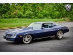 1981 Chevrolet Camaro Coupe for sale 101522242