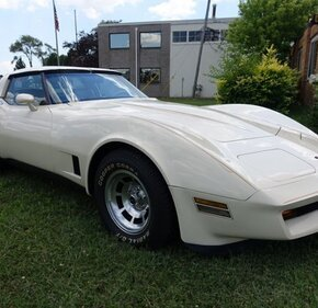 1981 Chevrolet Corvette for sale 101353781