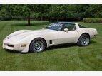 1981 Chevrolet Corvette for sale 101586960