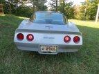 1981 Chevrolet Corvette Coupe for sale 101591999