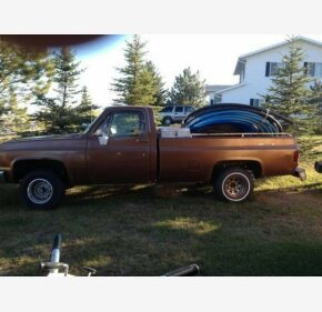 1981 Chevrolet Other Chevrolet Models for sale 101211688
