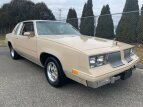 1981 Oldsmobile Cutlass for sale 101467744