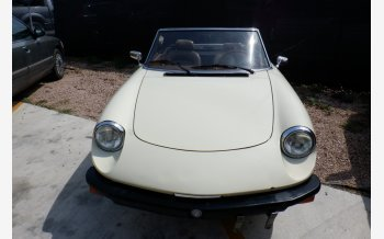 1982 Alfa Romeo Spider for sale 101341220