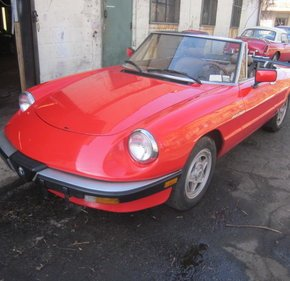 1984 Alfa Romeo Spider for sale 100857591