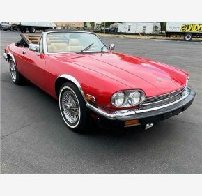 1984 Jaguar XJS V12 Coupe for sale 101348047