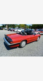 1986 Alfa Romeo Spider for sale 101383828
