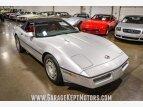 1986 Chevrolet Corvette for sale 101591241